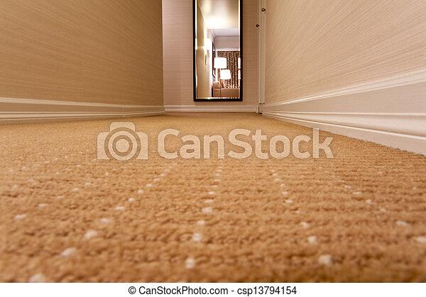 Carpet - csp13794154