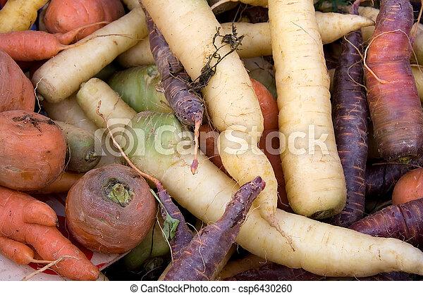 Carrot varieties horizontal - csp6430260