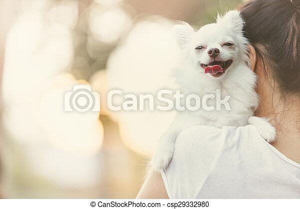 carry dog - csp29332980