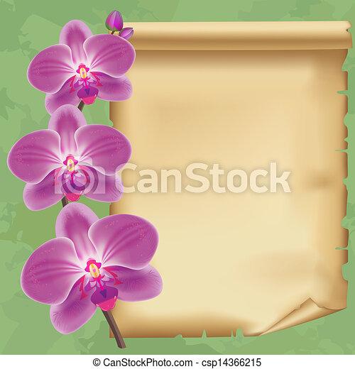 carta, vendemmia, fiore, fondo, orchidea - csp14366215