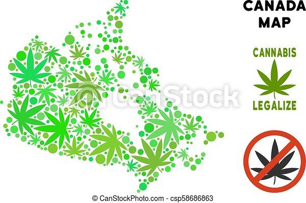 Carte Canada Gratuite.Carte Canada Feuilles Marijuana Gratuite Redevance Composition