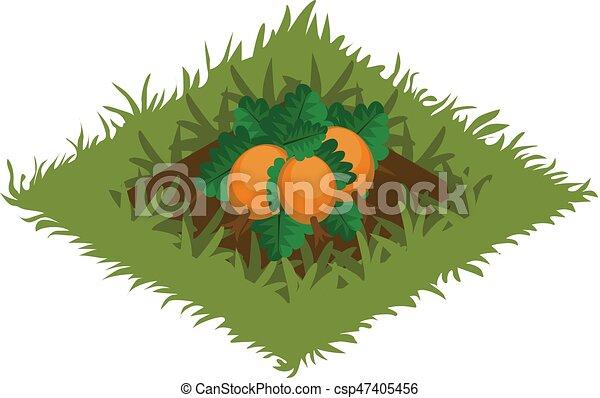 carte, isométrique, tileset, jardin, citrouille, lit, élément, planté, légume, dessin animé - csp47405456
