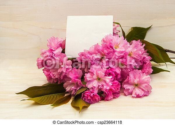 cartolina, flowers., sakura - csp23664118