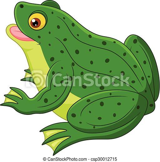 Cartone animato rana vettore illustrazione rana cartone animato
