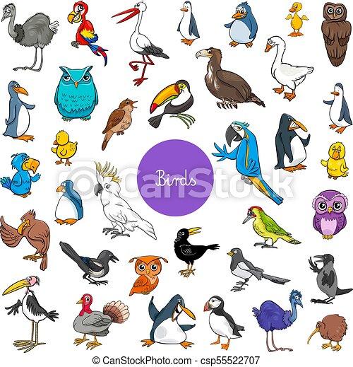 cartoon birds animal characters big set - csp55522707