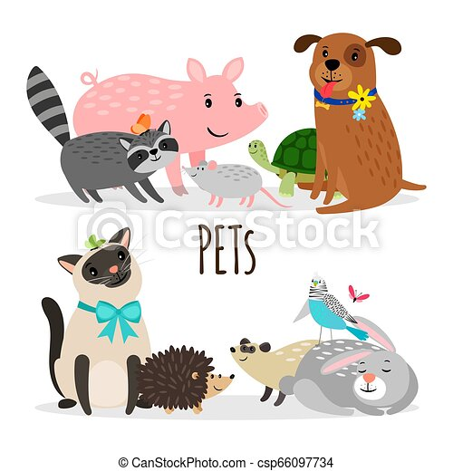 Cartoon character groups of vector pets isolated on white background - csp66097734