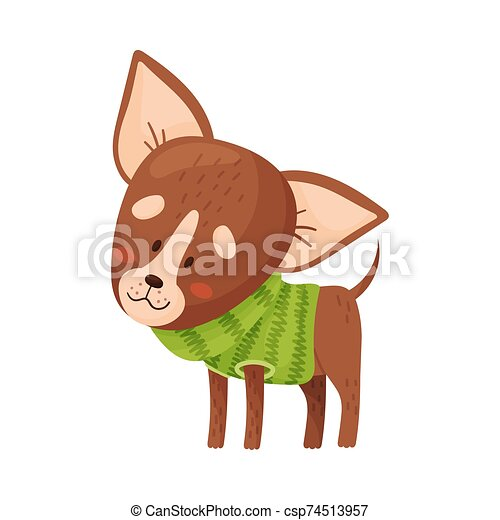 Cartoon chihuahua. Vector illustration on a white background. - csp74513957