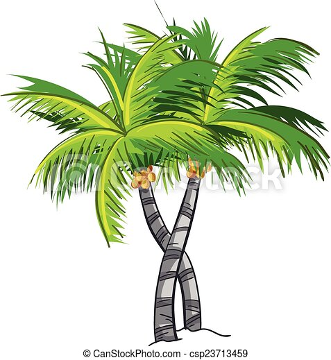 cartoon coconut tree rh canstockphoto com coconut tree clip art black and white coconut tree clipart free