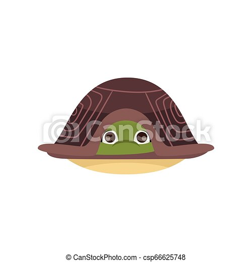 Cartoon Comic Turtle Hiding In Shell Isolated On White Background