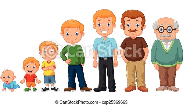 Cartoon development stages of man - csp25369663