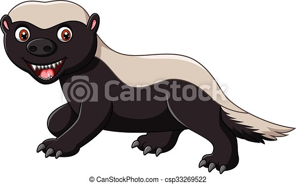 vector illustration of cartoon funny honey badger isolated on white rh canstockphoto com badger clip art free badger clip art free