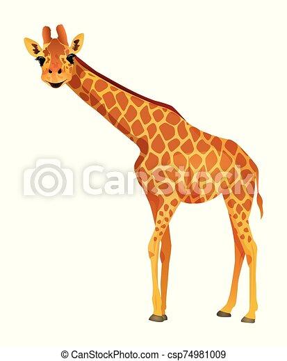 Cartoon giraffe isolated on a white background. Vector illustration. - csp74981009