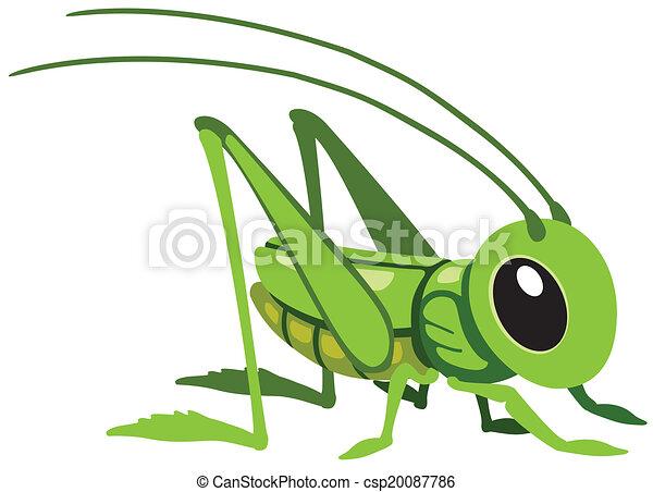 cartoon grasshopper - csp20087786