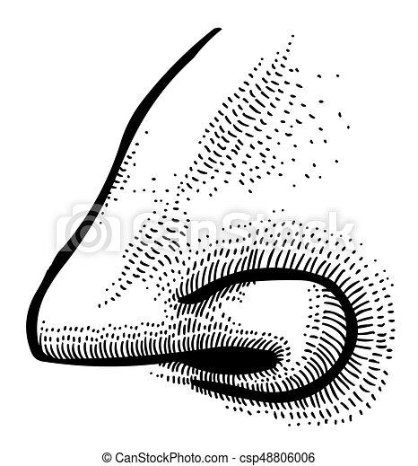 Cartoon image of human nose - csp48806006