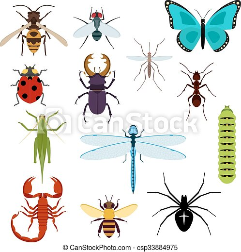 Cartoon isolated colorful insects set - csp33884975
