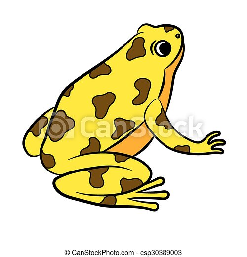 cartoon of poison dart frog coloring page vector rh canstockphoto com Glass Frog Rainbow Poison Dart Frog