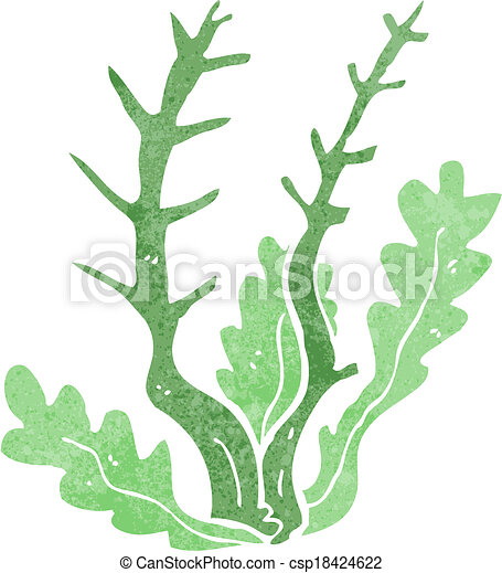cartoon seaweed vector illustration search clipart drawings and rh canstockphoto com seaweed vector free seaweed vector images