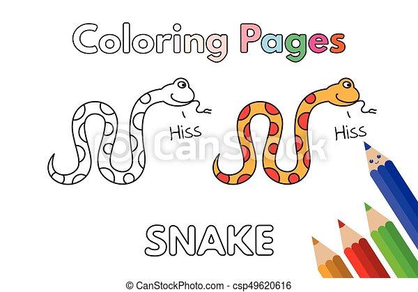 Cartoon Snake Coloring Book - csp49620616