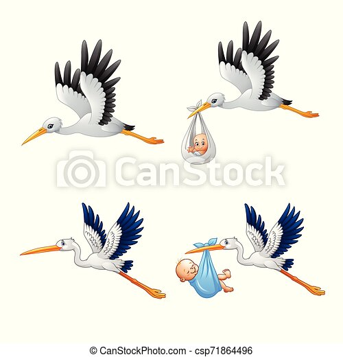 Cartoon Stork With Baby Collections Canstock