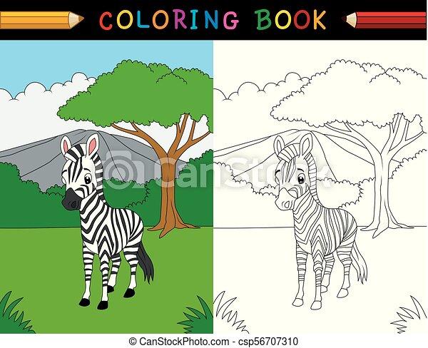 Cartoon zebra coloring book