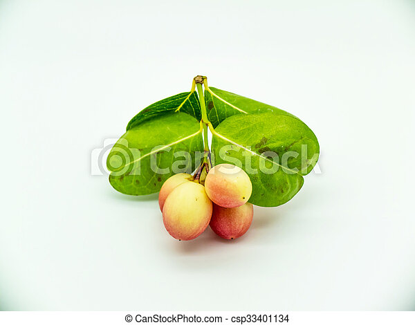 Carunda or Karonda, This fruit can treat cancer. - csp33401134