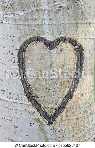 carved aspen heart - csp5626407