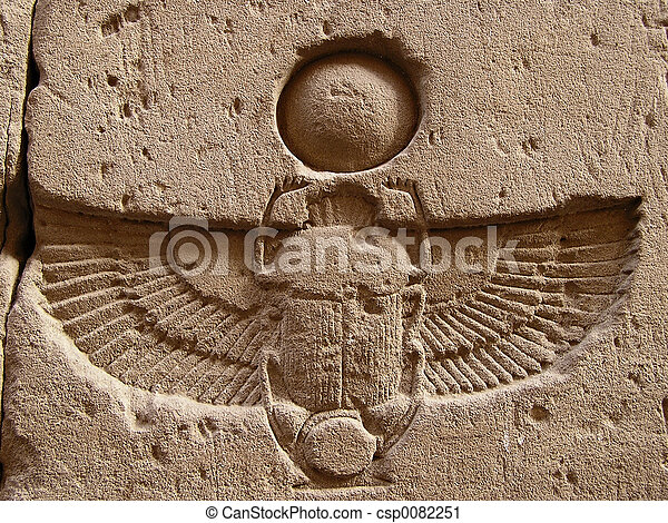 carved  scarab - csp0082251