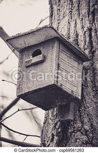 Casa de pájaros colgando de un árbol - csp69561263