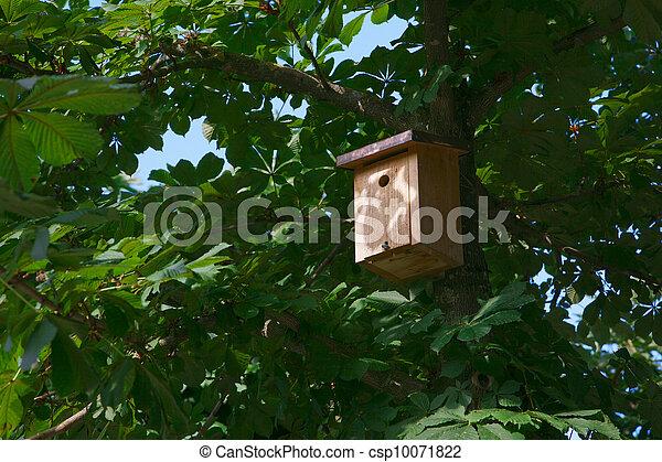 Casa de aves en un árbol - csp10071822