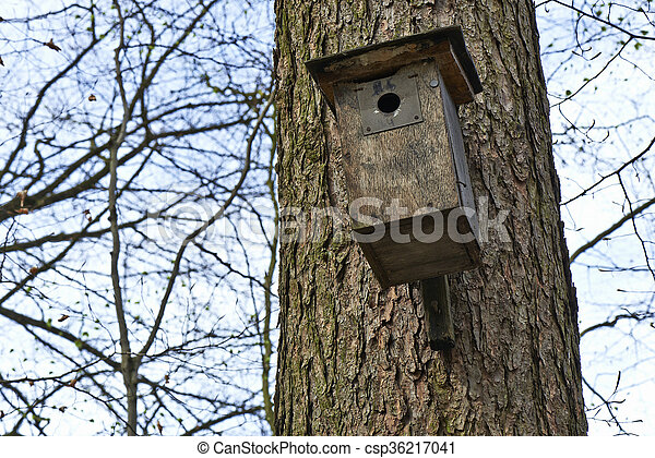 La casa del pájaro en el árbol - csp36217041