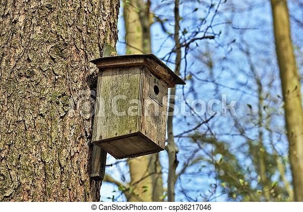 La casa del pájaro en el árbol - csp36217046