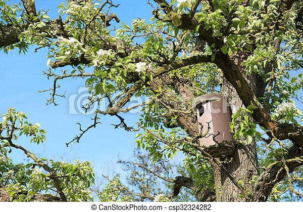 La casa del pájaro en el árbol - csp32324282
