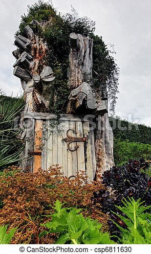 casa, albero - csp6811630