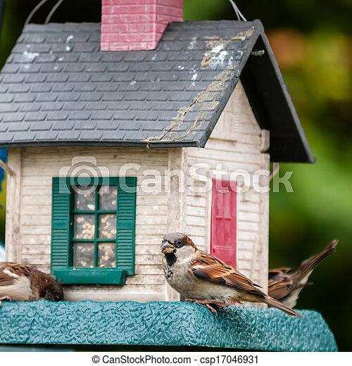 Alimentadores de aves. La casa del árbol para los pájaros, - csp17046931