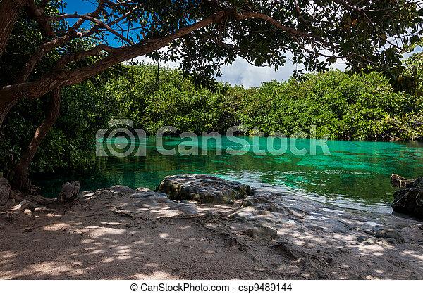 Casa Cenote Mexico Tulum Riviera Maya Caribbean Limestone Sinkho - csp9489144