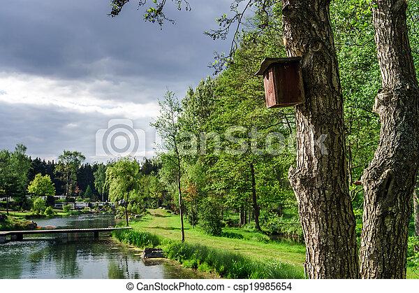 Una casa de pájaros en un árbol - csp19985654