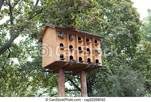 Casa de pájaros - csp22268042