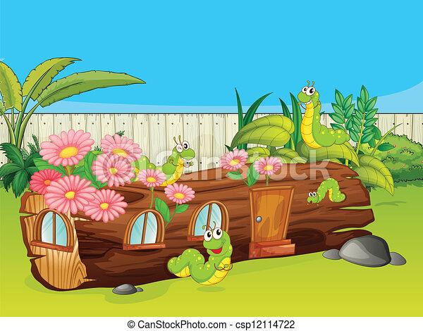 casa, madeira, lagartas - csp12114722