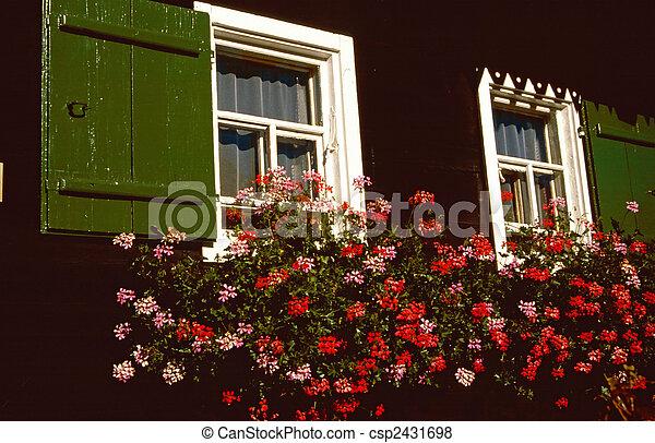 casa madeira, ld, fazenda, janela - csp2431698