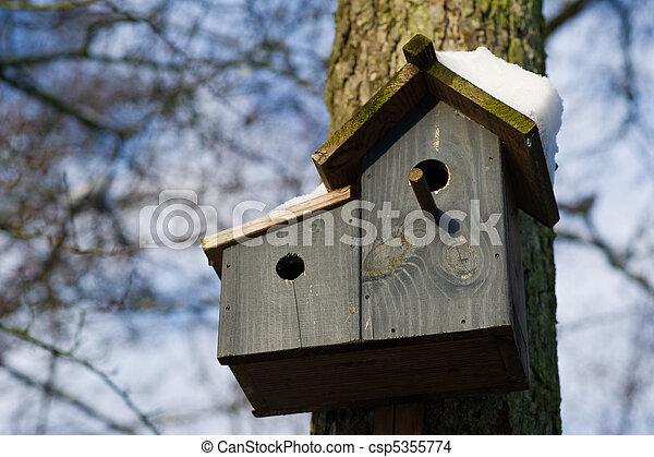 Casa de aves con nieve - csp5355774