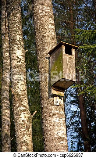 Casa de aves - csp6626937
