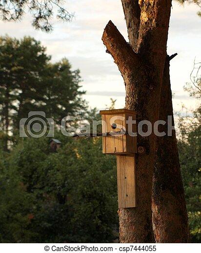 Una casita de pájaros en un tronco - csp7444055