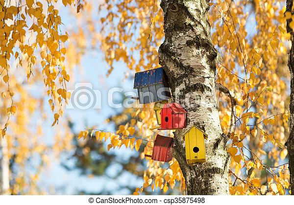 Casas de pájaros en el árbol - csp35875498