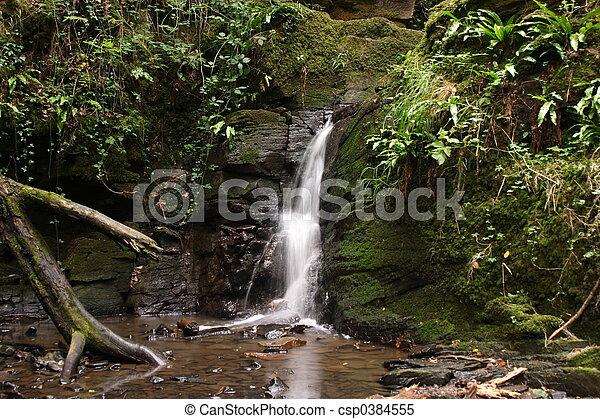 cascada, bosque - csp0384555