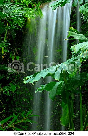 Una cascada en la selva tropical - csp0541324