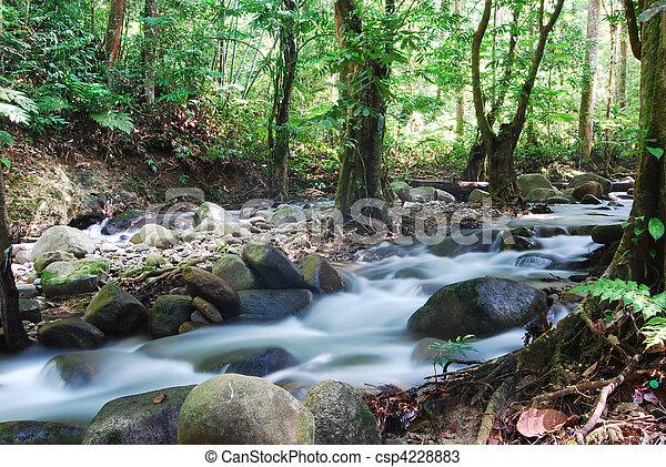 Cascada verde - csp4228883