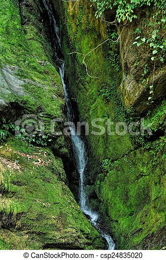 Cascada verde - csp24835020