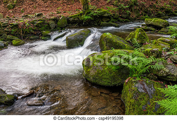 cascade on the little stream with stones in forest - csp49195398