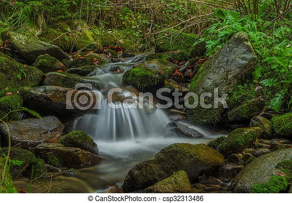 cascata - csp32313486