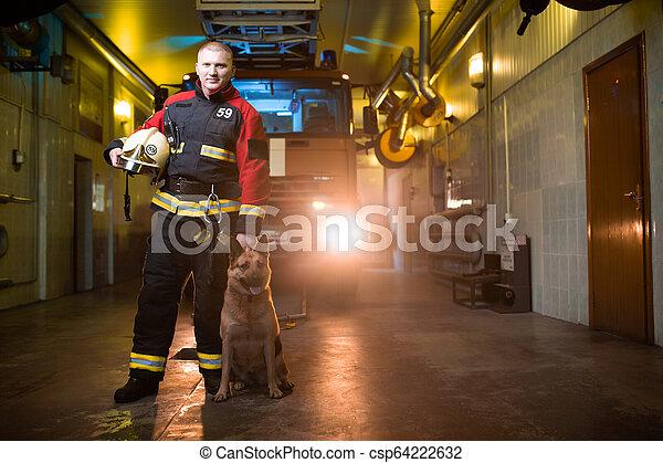 Foto de bombero sosteniendo el casco en las manos y el perro en el fondo del camión de bomberos - csp64222632